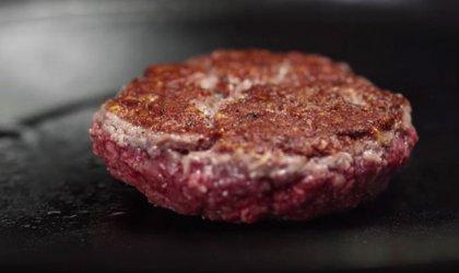 未来20年,人造肉会成为我们餐桌上的主角吗?【重庆火锅底料厂有哪些】