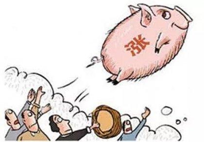 生猪肉从今年6月份开始涨价,到日前,猪肉的全国出栏价已经达到40元/公斤,
